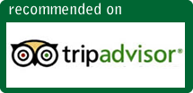 Tanzania Safari Recommendations on Trip Advisor